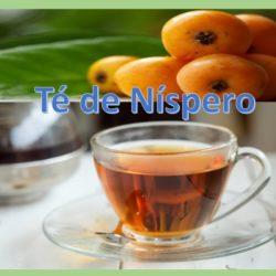 Té de Níspero: ¿Para qué sirve?, ¿Cómo hacerlo? y mucho más