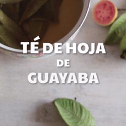 Té de Hojas de Guayaba: ¿para qué sirve? contraindicaciones, ¿Cómo hacerlo? y más