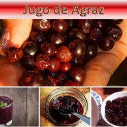 Jugo de Agraz: Conoce los beneficios de esta bebida antioxidante