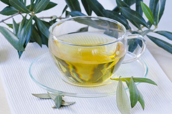 te-de-olivo